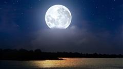 Trăng tròn Sư Tử mang đến cho 12 chòm sao 2 tuần cuối năm đầy màu sắc