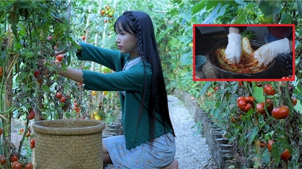Dân mạng Hàn Quốc phẫn nộ với món ăn 'giống hệt kim chi' lại được Lý Tử Thất gắn thẻ 'Ẩm thực Trung Hoa'