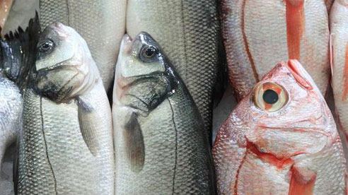 Ăn thịt cá tốt cho sức khỏe nhưng có 2 loại cá là 'bể chứa' các kim loại nặng tốt nhất không nên ăn
