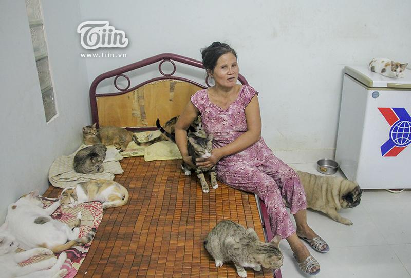 Chiếc giường ngủ của cô Chi cũng trở thành nơi ở của chó mèo