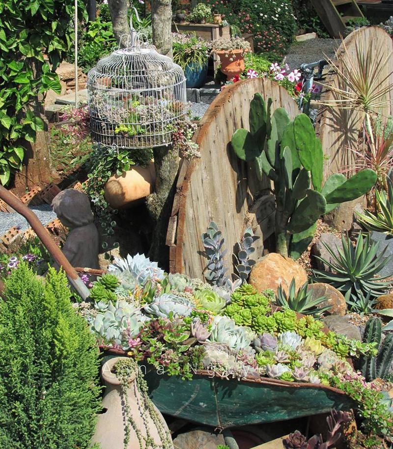 Khu vườn 've chai' làm từ đồ đồng nát của bà mẹ 8X Lâm Đồng.