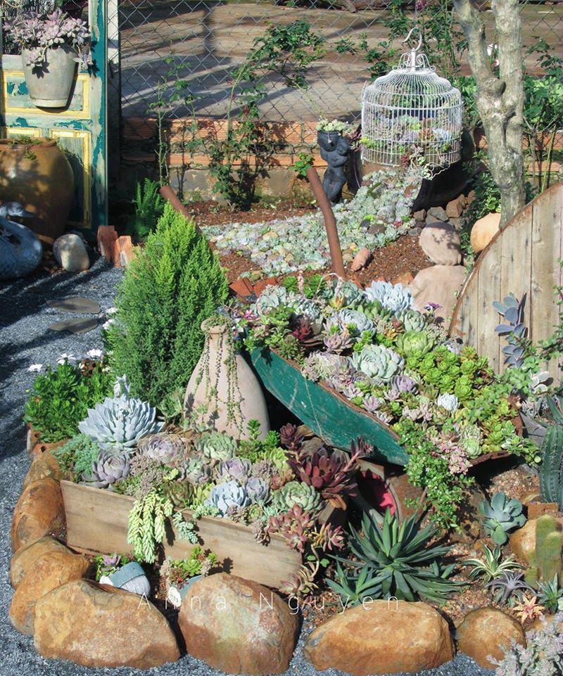 Mê mẩn với khu vườn ngập sắc hoa được tạo từ đống đồ ve chai của bà mẹ 8X Lâm Đồng 5
