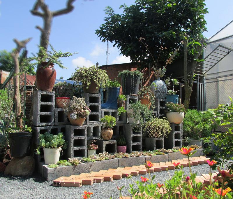 Mê mẩn với khu vườn ngập sắc hoa được tạo từ đống đồ ve chai của bà mẹ 8X Lâm Đồng 7