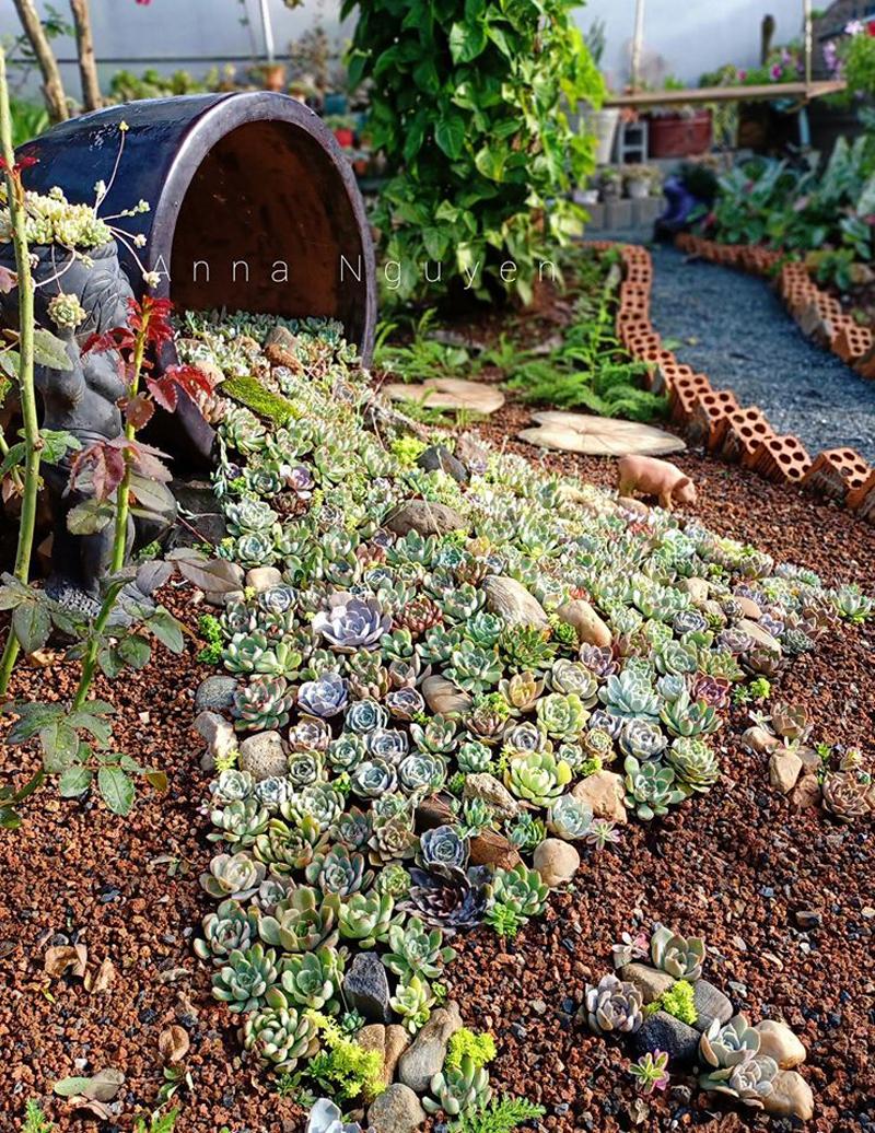 Mê mẩn với khu vườn ngập sắc hoa được tạo từ đống đồ ve chai của bà mẹ 8X Lâm Đồng 2