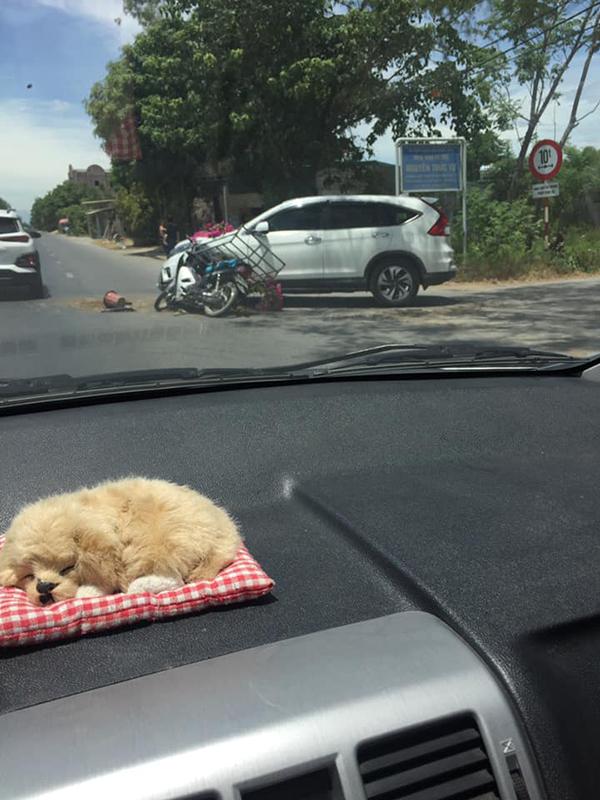 Bị xe máy tông móp đầu ôtô, hành xử của chủ xế hộpnhận bão like: 'Chú đi bán hoa vất vả, để cháu tự sửa xe' 0