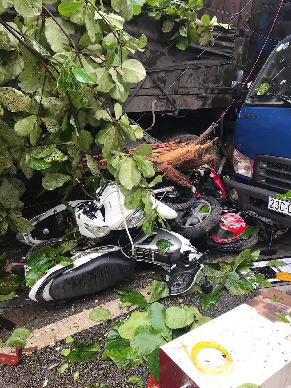 Đánh lái cứu sống 2 người sang đường ẩu ở Hà Giang, tài xế thẫn thờ khi biết thiệt hại gây ra gần 1 tỷ đồng 3