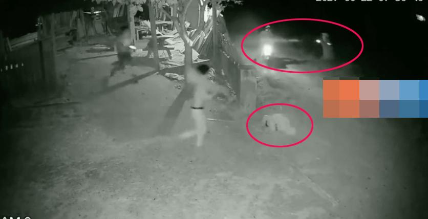 Hai tên trộm chó bỏ chạy để lại tang vật