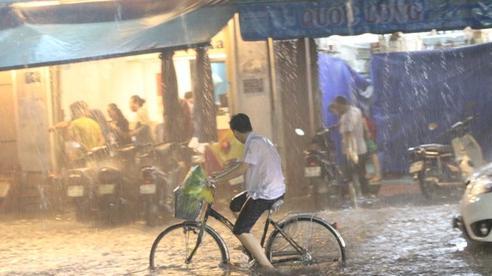 TP HCM: Sắp đón những cơn mưa cực lớn, đề phòng ngập lụt khu vực thấp