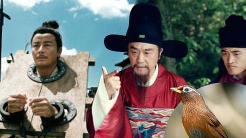 Kỳ án Trung Hoa cổ đại: Tội ác đẫm máu xoay quanh chú chim họa mi đắt giá, 5 người đàn ông lần lượt chết đi trong 3 năm