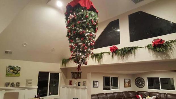 Xuôi hay ngược gì thì nó vẫn là cây thông Noel nhé cả nhà!