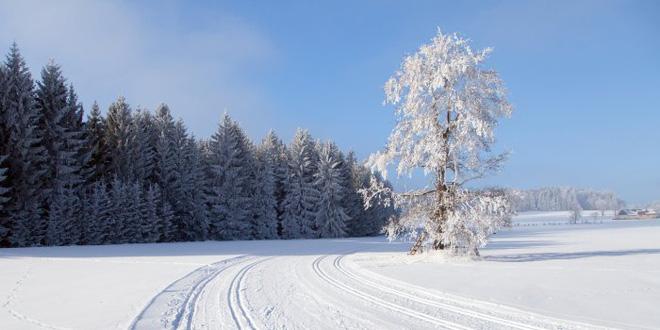 Tuyết đã rơi dày trong nhiều ngày qua ở Ukraine, khiến cuộc sống và tình hình giao thông của quốc gia này gặp nhiều khó khăn. (Ảnh minh họa)