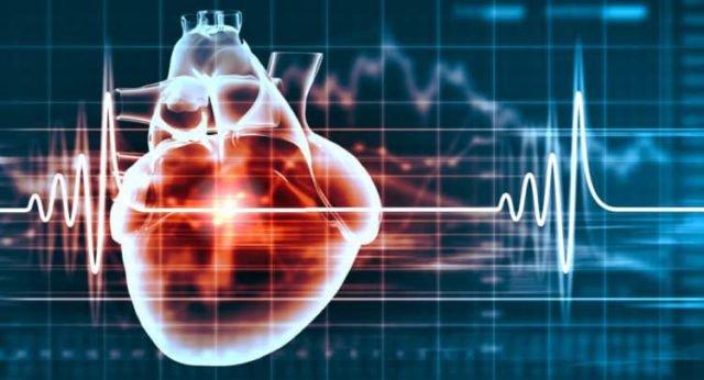 Nhịp tim của một người khoảng 70 nhịp/phút, tuổi thọ có thể đạt tới 80 tuổi.