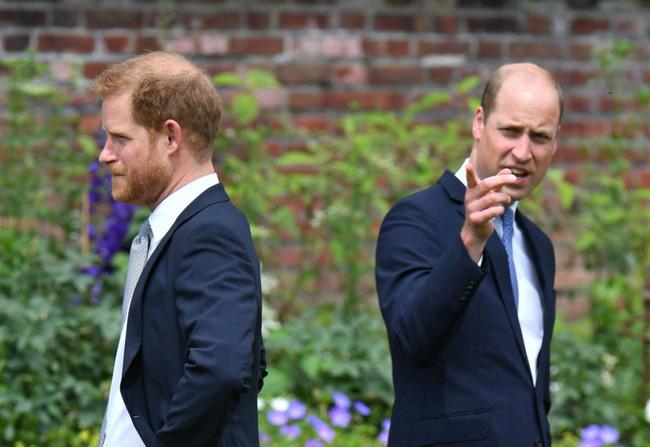 Harry và William tại lễ khánh thành tượng mẹ.