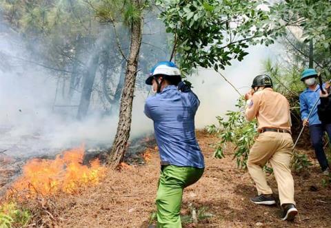 Nhiều lực lượng tham gia chữa cháy tại đồi Rú Trác, chiều 30/7. Ảnh: VnExpress