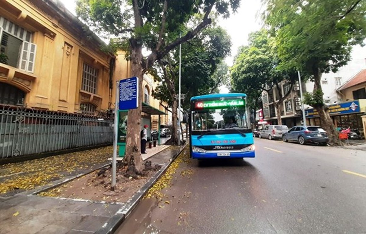 Xe buýt Hà Nội sắp được hoạt động trở lại sau thời gian phải tạm dừng do ảnh hưởng của dịch COVID-19. (Ảnh: Việt Hùng/Vietnam+)
