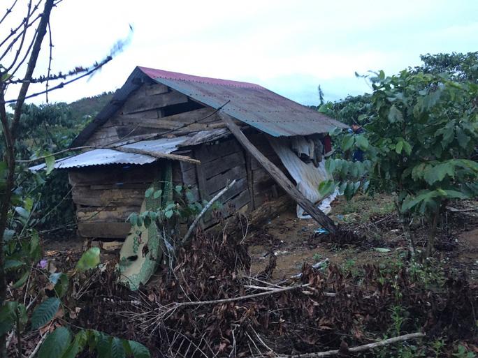 Căn chòi tại tỉnh Lâm Đồng, nơi phát hiện nạn nhân bên trong