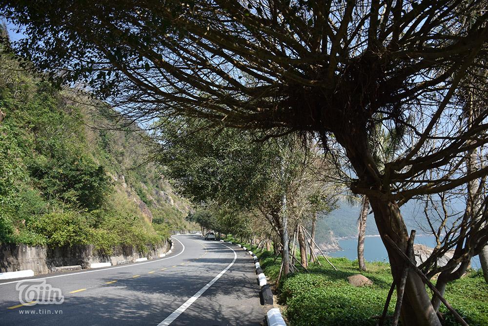 Bán đảo Sơn Trà được mệnh danh là lá phổi xanh của thành phố Đà Nẵng. Không chỉ vậy, nơi này còn là địa điểm tham quan du lịch nổi tiếng với cảnh đẹp và hàng loạt điểm check-in hoành tráng.