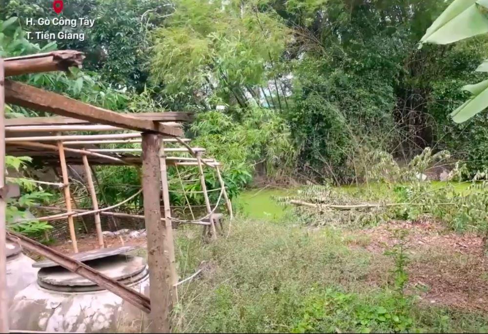 Mảnh vườn bên cạnh nhà Hồ Văn Cường tại Tiền Giang