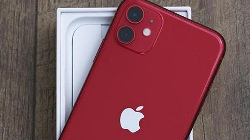 Tin không vui, iPhone 12 mini sẽ sở hữu cấu hình rất đáng thất vọng