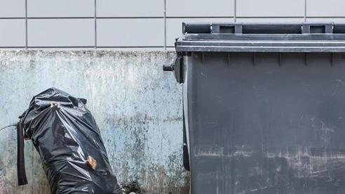 Nghe thấy tiếng kêu yếu ớt như mèo con khi đi đổ rác, người đàn ông phát hiện tội ác kinh hoàng của nữ bảo mẫu
