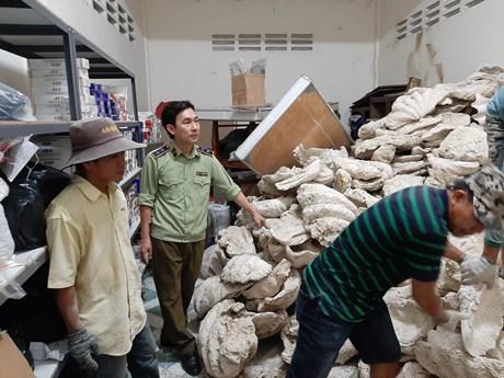 Chuyển lô tang vật 21 tấn vỏ trai tai tượng khổng lồ cho bảo tàng
