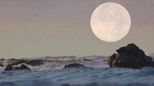 Sự thật bất ngờ về nước trên bề mặt đầy nắng của Mặt Trăng