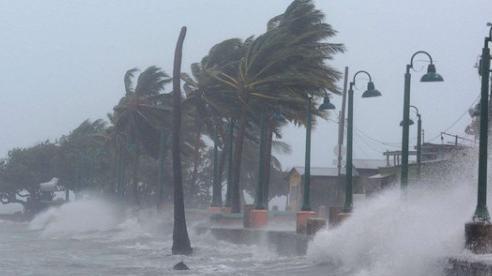 Bão số 9 suy yếu thành áp thấp nhiệt đới, cảnh báo lũ lớn ở Quảng Nam