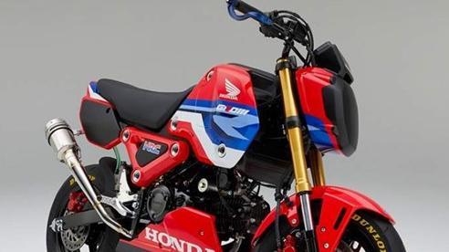 Honda chính thức ra mắt Honda Grom - phiên bản trường đua của MSX 2021
