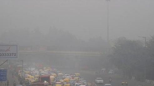 Ngày có chất lượng không khí độc hại nhất trong năm tại New Delhi
