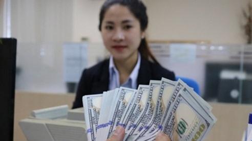 Tỷ giá ngoại tệ hôm nay (26/11): USD đi ngang, Euro tăng vọt
