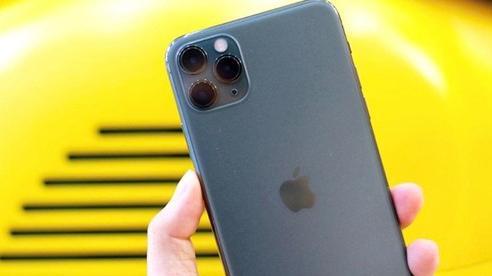 Giá iPhone 11 và iPhone 11 Pro Max giảm rất mạnh