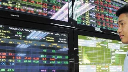Chứng khoán đồng loạt khởi sắc, VN-Index tăng hơn 10 điểm