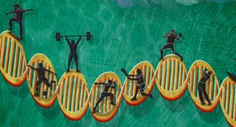 Thiên tài trong gene: Sức bền hay sức mạnh?