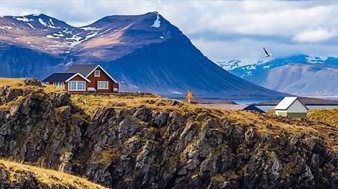 Iceland - Quốc gia chỉ có một con muỗi