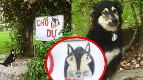 Chủ nhà thông báo 'Chó dữ' cùng ảnh minh họa sinh động, nhưng khi 'nhân vật chính' lộ diện dân mạng liền cười bò: 'Tấu hài thì đúng hơn'