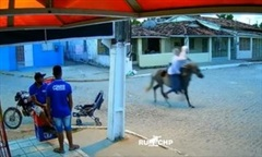 Clip 2 thanh niên dùng ngựa đi cướp như những... cao bồi
