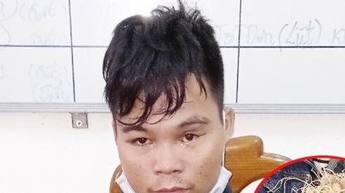 Quảng Nam: Khởi tố 'quý tử' trộm 10 củ sâm trong vườn của cha