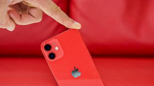 Mẫu iPhone 12 này có thể sớm bị Apple ngừng sản xuất