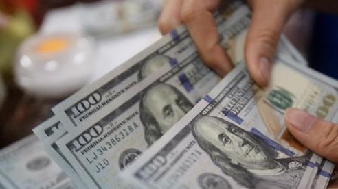 Tỷ giá ngoại tệ hôm nay 11/2: Đồng USD tiếp xu hướng giảm