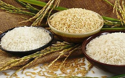 Tiêu dùng ngày Tết: Nguồn cung gạo dồi dào, giá cả ổn định