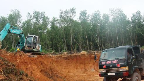 Dùng 'đất lậu' để san lấp công trình nhà nước, doanh nghiệp bị phạt nặng