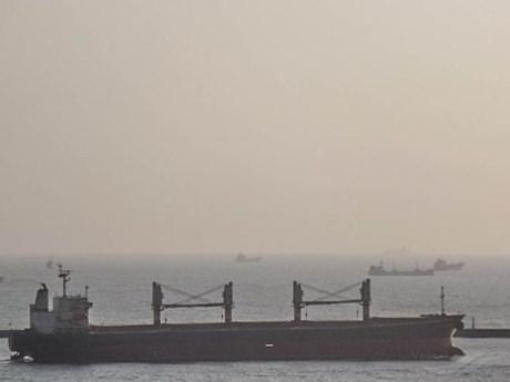 Thông tin mới nhất về vụ tàu chở hàng có ca nhiễm COVID-19
