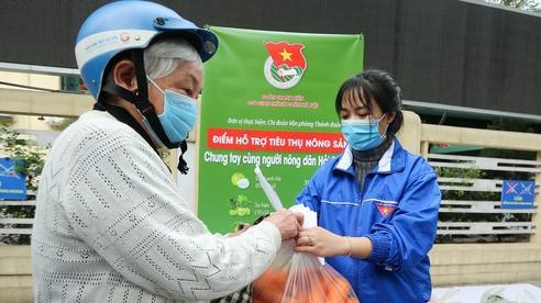 Hà Nội: Bất kể đêm hôm hay sáng sớm, nhà nhà chung tay giải cứu nông sản Hải Dương