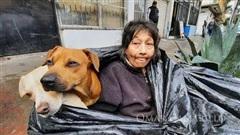 Bà lão kiên quyết sống cùng 6 con chó trong túi rác vì lí do đặc biệt và cái kết ngọt ngào khiến ai nghe cũng cảm động
