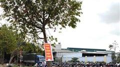 Thanh Hóa: Chủ tịch huyện chỉ đạo dẹp 'chợ cóc' bủa vây Quốc lộ 45