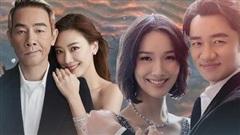 Mỹ nhân Cbiz lấy chồng 'đũa lệch' về nhan sắc: Người bỏ qua Tạ Đình Phong, Trương Quốc Vinh để ở bên đạo diễn kém sắc, người cưới đại gia bị tật nguyền