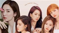 Nguyên nhân giúp Song Hye Kyo, BLACKPINK trở thành gương mặt đại diện toàn cầu của những nhãn hàng xa xỉ