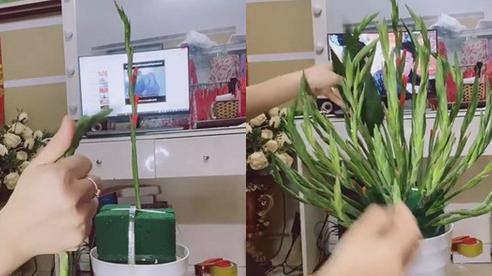 Người phụ nữ dùng tay không uốn cành hoa lay ơn từ thẳng sang cong đẹp tuyệt đối, cư dân mạng nhất mực làm theo nhưng lại nhận kết đắng