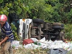 Lâm Đồng: Xe container rơi xuống vực sâu trên đèo Bảo Lộc