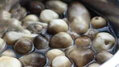 Món nấm thì ai cũng thích, nhưng 90% chúng ta đều sơ chế sai lầm hết sức!